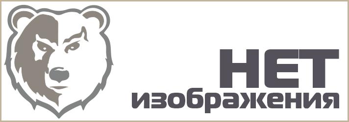 ТОЗ-250